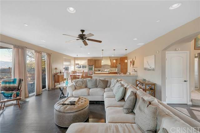 11202 Lewis Hill Drive, Agua Dulce, CA 91390 (#SR21001039) :: Randy Plaice and Associates