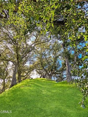 463 Sky High Drive, Ventura, CA 93001 (#V1-3327) :: Eman Saridin with RE/MAX of Santa Clarita