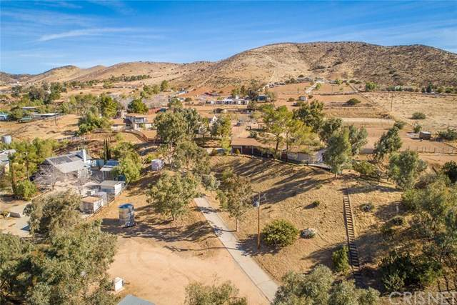 34424 Red Rover Mine Road, Acton, CA 93510 (#SR21006926) :: Randy Plaice and Associates