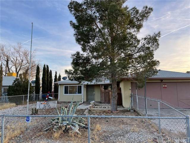 1574 Richfield Avenue, Rosamond, CA 93560 (#SR21008376) :: Randy Plaice and Associates
