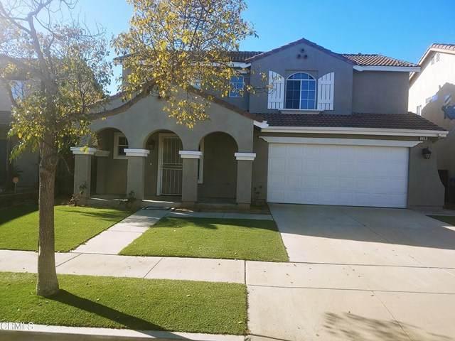 779 Festivo Street, Oxnard, CA 93030 (#V1-3444) :: Randy Plaice and Associates