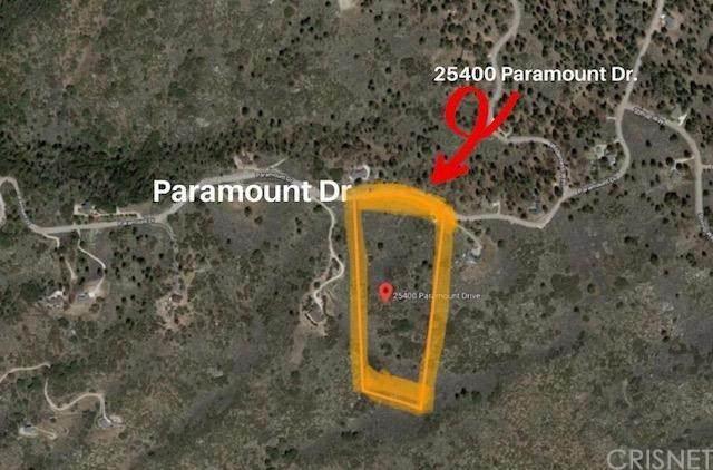 25400 Paramount Drive, Tehachapi, CA 93561 (#SR21014724) :: TruLine Realty