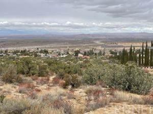 15800 Vac/Ave Y8/Vic 157th Ste, Llano, CA 93544 (#SR21015453) :: The Grillo Group