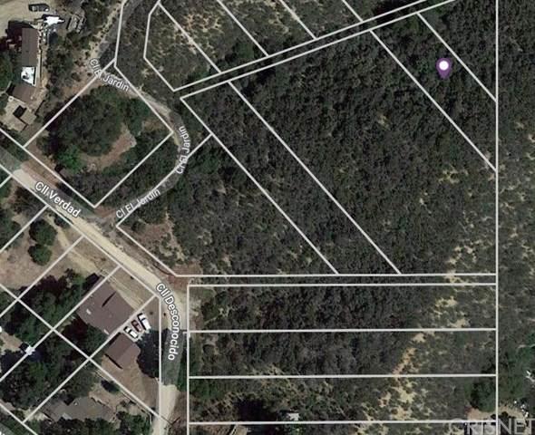 0 Vac/Walk Nog /Viccalle El Jard, Green Valley, CA 91350 (#SR21015748) :: TruLine Realty