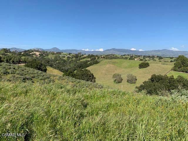 0 Buck Canyon Road, Santa Ynez, CA 93460 (#221000442) :: TruLine Realty