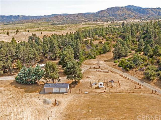 13224 Boy Scout Camp Road, Frazier Park, CA 93225 (#SR21023976) :: The Grillo Group