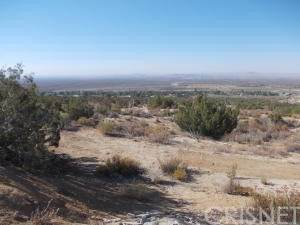 31221 161 St East, Llano, CA 93544 (#SR21025226) :: The Grillo Group