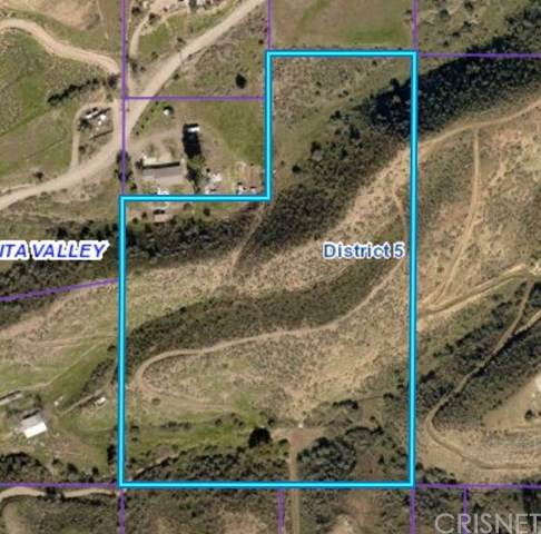 0 Vac/Vic Vallejo Rd/Lavery Cany Road, Agua Dulce, CA 91350 (#SR21030613) :: HomeBased Realty