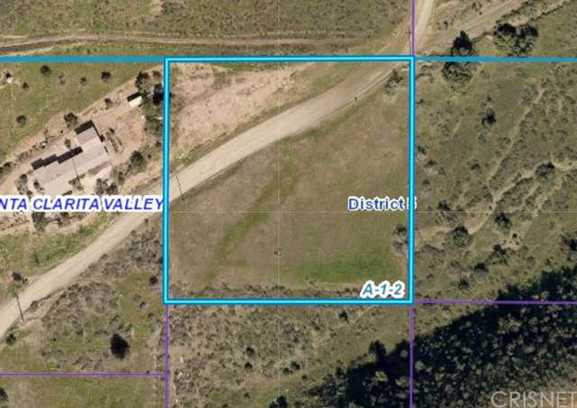 0 Vac/Cor Vallejo Drt /Lavery, Agua Dulce, CA 91350 (#SR21030621) :: HomeBased Realty