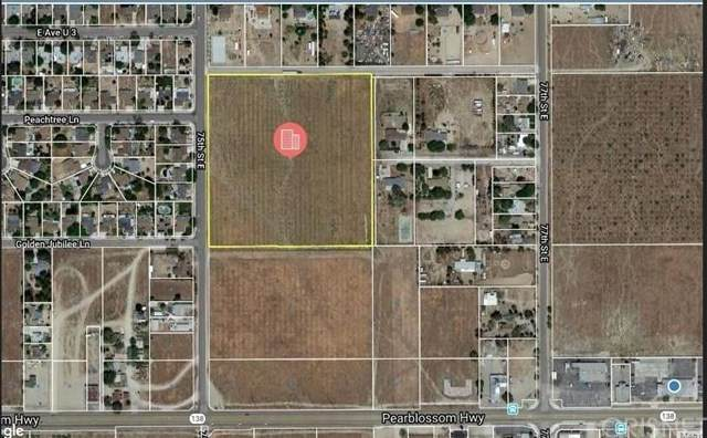 75 E Vac/75 Ste/Vic Avenue U4, Littlerock, CA 93543 (#SR21030925) :: The Grillo Group