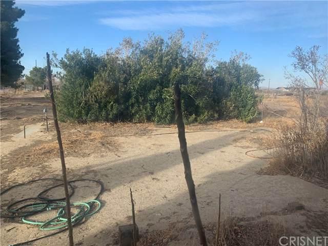 16507 E Avenue T4, Llano, CA 93544 (#SR21033422) :: The Grillo Group