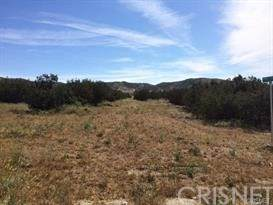 0 Vac/Shannondale Rd/Vic Hannah Court, Acton, CA 93510 (#SR21033051) :: HomeBased Realty