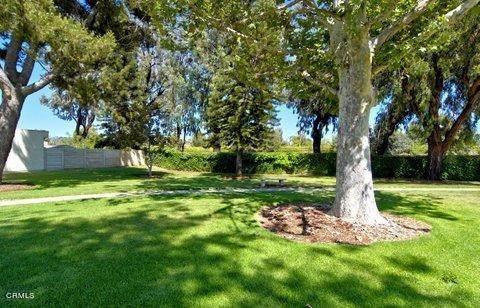 2219 Placita San Rufino, Camarillo, CA 93010 (#V1-4091) :: Berkshire Hathaway HomeServices California Properties