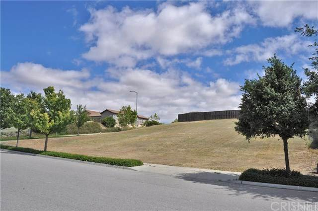 680 Red Cloud Road, Paso Robles, CA 93446 (#SR21036248) :: Lydia Gable Realty Group
