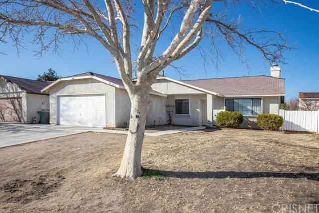 2021 Buckwheat Avenue, Rosamond, CA 93560 (#SR21040606) :: HomeBased Realty