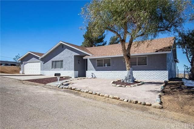 35433 Alida Lane, Palmdale, CA 93552 (#SR21040868) :: TruLine Realty