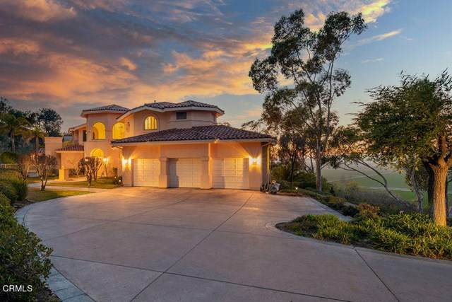 1502 Avenida De Aprisa, Camarillo, CA 93010 (#V1-4152) :: The Grillo Group