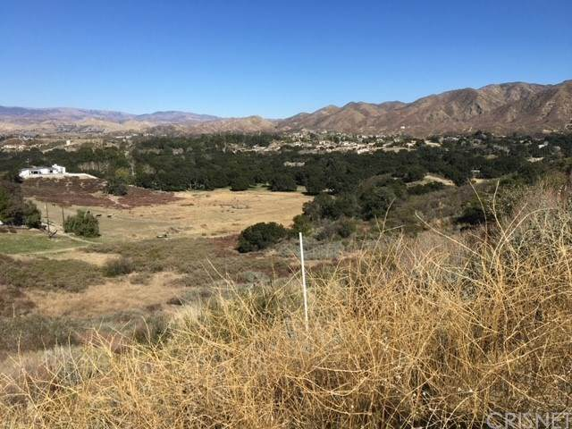 0 Amber Ridge, Canyon Country, CA 91387 (#SR21042577) :: Randy Plaice and Associates