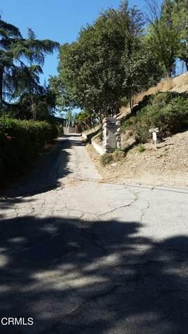 9929 Shadow Hills Drive - Photo 1