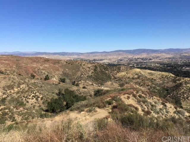 0 0, Canyon Country, CA 91387 (#SR21043658) :: Lydia Gable Realty Group