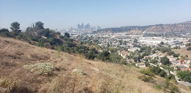 334 E Waldon Place, Los Angeles, CA 90031 (#P1-3606) :: The Grillo Group