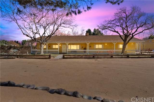 40836 36th Street W, Palmdale, CA 93551 (#SR21045519) :: Randy Plaice and Associates