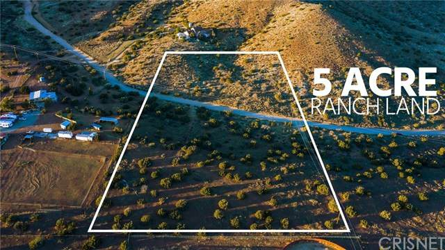 34500 Peaceful Valley Rd, Acton, CA 93510 (#SR21045565) :: HomeBased Realty