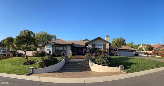 2060 La Ramada Drive, Camarillo, CA 93012 (#V1-4257) :: TruLine Realty