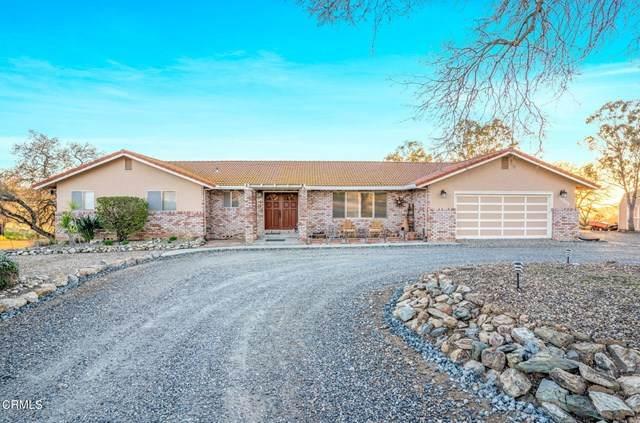 9733 Hernandez Drive, La Grange, CA 95329 (#V1-4307) :: The Grillo Group