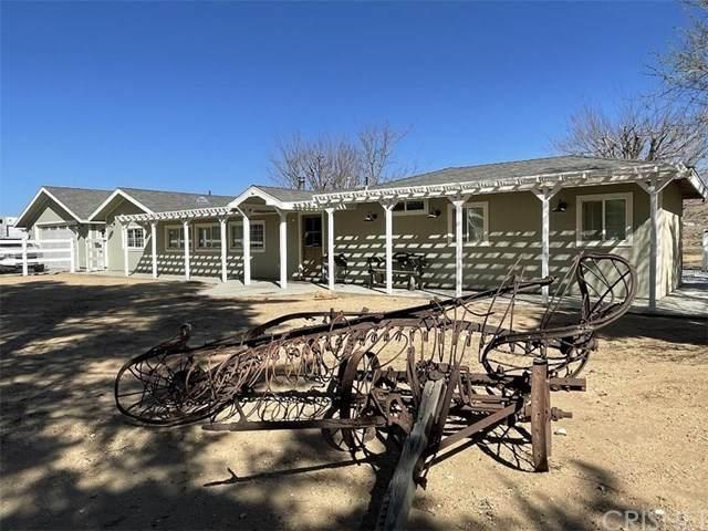 31765 Indian Oak Road, Acton, CA 93510 (#SR21056998) :: Montemayor & Associates