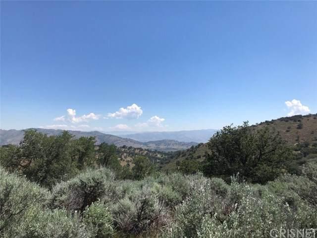 0 Matterhorn Lane, Tehachapi, CA 93561 (#SR21060411) :: TruLine Realty