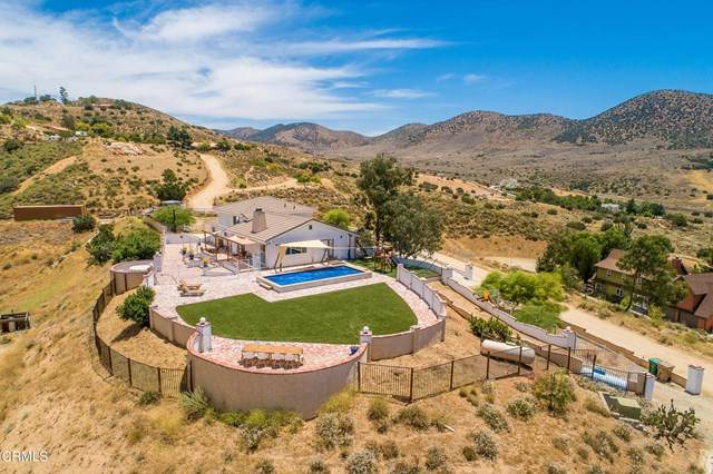 9175 Yucca Hills Road, Agua Dulce, CA 91390 (#V1-4778) :: TruLine Realty