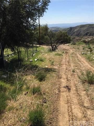 13737 Mansard Road, Kagel Canyon, CA 91342 (#SR21048462) :: Randy Plaice and Associates