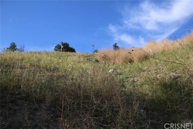 11805 Kagel Canyon Road, Kagel Canyon, CA 91342 (#SR21066190) :: Randy Plaice and Associates