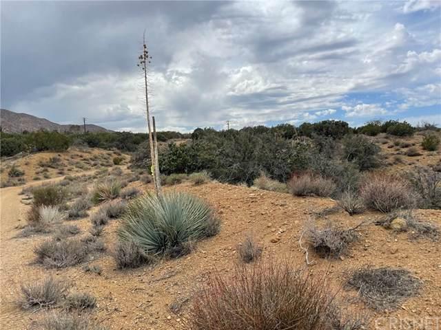 0 Vac/Vic Rainbow Acres Rd/106 S, Juniper Hills, CA 93543 (#SR21069228) :: TruLine Realty