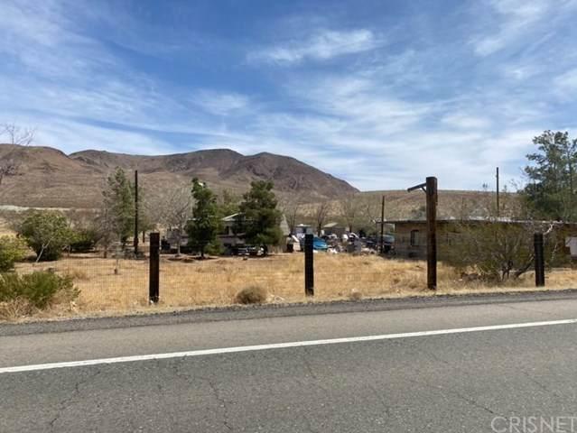658 Red, San Bernardino, CA 93558 (#SR21072063) :: The Grillo Group