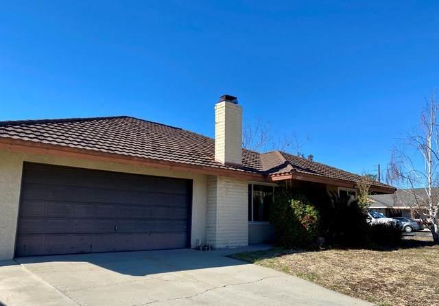 1307 Petit Avenue, Ventura, CA 93004 (#221001801) :: TruLine Realty