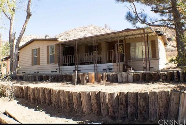 10470 Cameron Canyon Road, Tehachapi, CA 93561 (#SR21073887) :: TruLine Realty