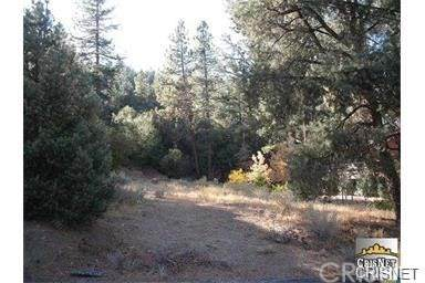 2035 Freeman Drive, Pine Mtn Club, CA 93222 (#SR21075867) :: The Grillo Group