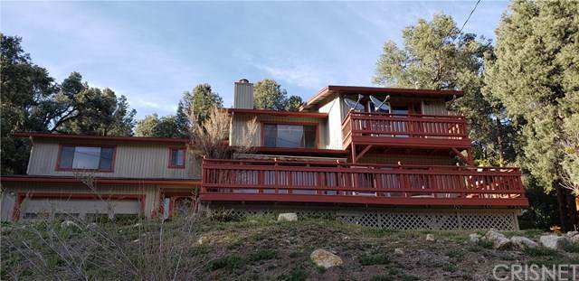 16501 Grizzly Drive, Pine Mtn Club, CA 93225 (#SR21076984) :: The Parsons Team