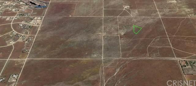 24300 Vac/Cor 243 Stw Drt /Desert Eg, Neenach, CA 93536 (#SR21077124) :: Lydia Gable Realty Group