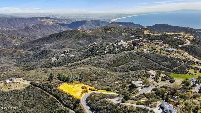 23333 Saddle Peak Road, Topanga, CA 90290 (#221001894) :: Lydia Gable Realty Group