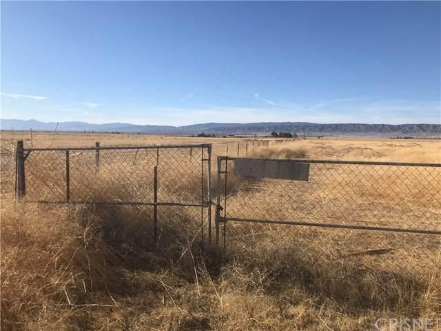 0 W Vac/Ave F/Vic 85 Stw, Lancaster, CA 93536 (#SR21078930) :: Lydia Gable Realty Group