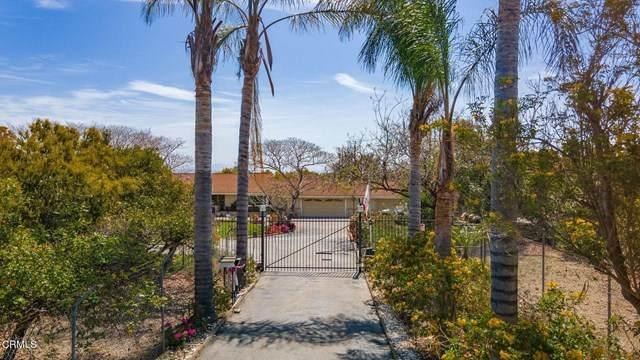 11176 Foothill Road, Santa Paula, CA 93060 (#V1-5211) :: Lydia Gable Realty Group