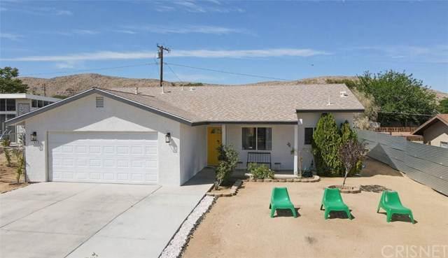 61852 Oleander Drive, Joshua Tree, CA 92252 (#SR21081913) :: Lydia Gable Realty Group