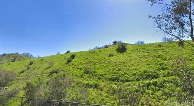 22866 Mulholland Highway, Calabasas, CA 91302 (#SR21082289) :: Randy Plaice and Associates