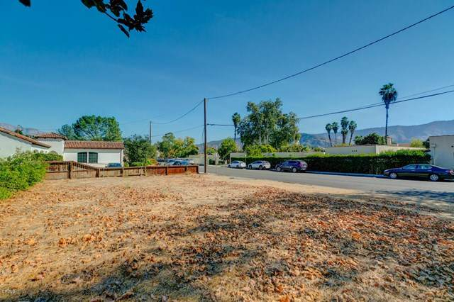 202 N Ventura Street, Ojai, CA 93023 (#V1-2263) :: Lydia Gable Realty Group