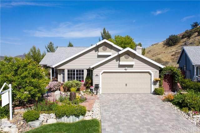 31912 Gelding Road, Castaic, CA 91384 (#SR21083559) :: Randy Plaice and Associates