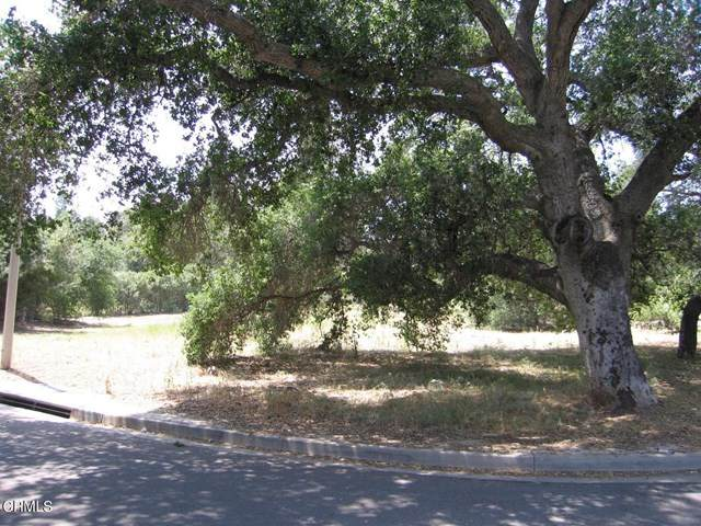 1303 N Montgomery Street, Ojai, CA 93023 (#V1-5383) :: Berkshire Hathaway HomeServices California Properties