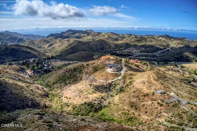 33377 Mulholland Highway, Malibu, CA 90265 (#221002220) :: Berkshire Hathaway HomeServices California Properties